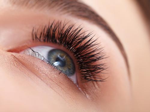 maldon-eyelash-service